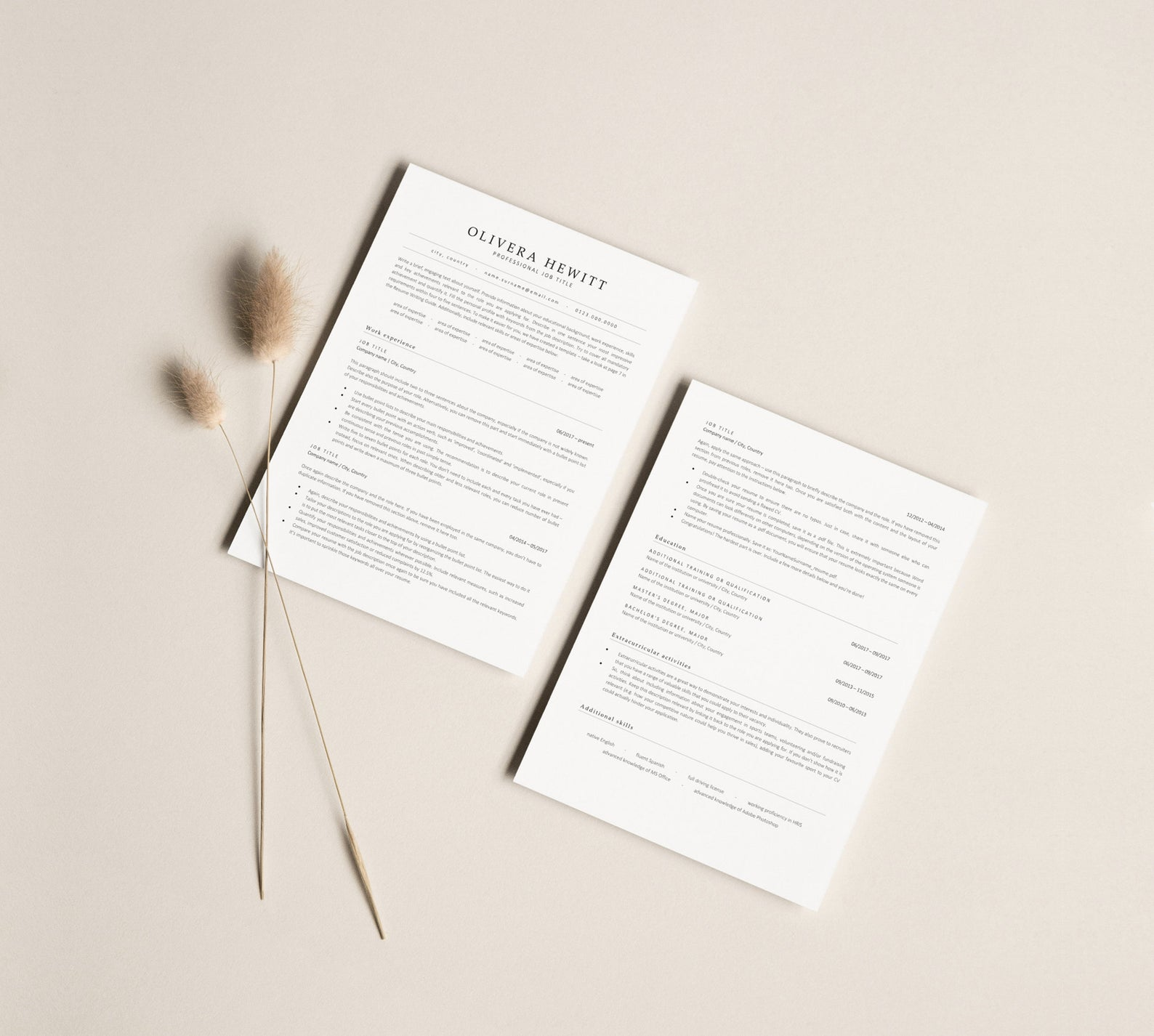correctly-using-resume-template